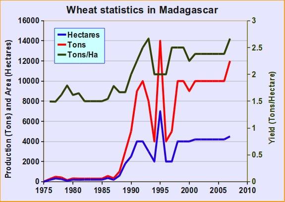 madagascar_wheat