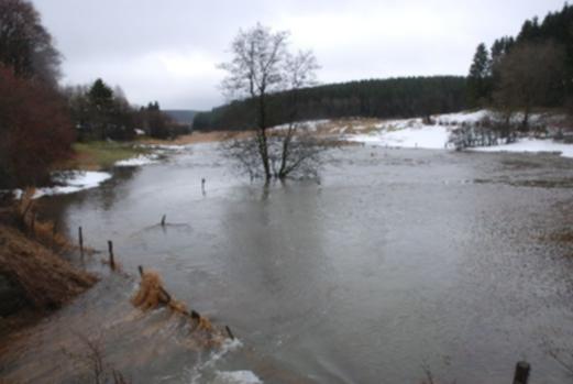 """Inondations de l'Amel (Amblève) à Deidenberg le 26 février 2010. Le Grenz-Echo ne mentionnne pas les castors. Il s'agit d'une inondation """"ordinaire""""due à la fonte des neiges."""